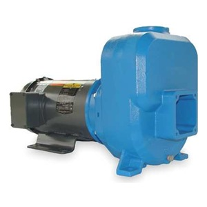 Goulds Water Technology 30SPH10