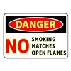 Brady 102450 Danger No Smoking Sign, 7 x 10In, ENG, Text