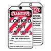 Accuform Signs TAR426 Danger Tag, 6-1/4 x 3 In, Cardstock, PK250