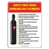 Accuform Signs PST318 Safety Poster, 24 x 18In, FLEX PLSTC, ENG