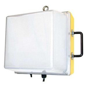 W F Harris Lighting 1200-WL-12-LED