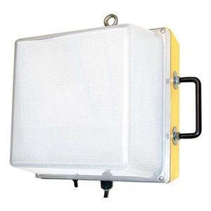 W F Harris Lighting 1200-WL-12-LED