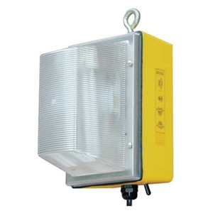 W F Harris Lighting 300-WL-70-HPS