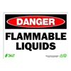 Zing 2099 Sign, Danger Flammable Liquids, 10x14