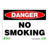 Zing 2109 Sign, Danger No Smoking, 10x14, Plastic