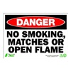 Zing 1110 Sign, Danger No Smoking, 7x10, Plastic