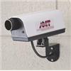 Brady 95140 Camera, Surveillance, Dummy